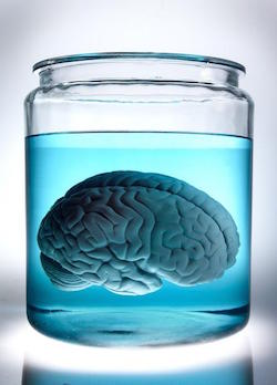 A photo of a brain in a jar: Mental accounting explains some of the odd things we think about money